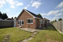 3 bedroom Detached Bungalow in 8, Regent Avenue...