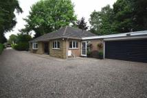 3 bed Detached Bungalow for sale in 18a, Whin Hill Road...