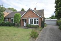 Detached Bungalow to rent in To Let,43, Pinfold Lane...