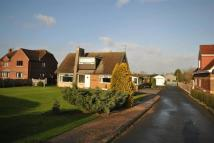 Detached Bungalow for sale in Cedar Lodge, Green Lane...
