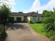 3 bedroom Detached Bungalow in Newark Road...