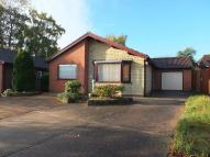 Detached Bungalow for sale in Shearwater Road...