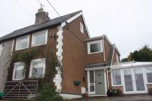 semi detached house to rent in Bryn Gwynt Lane...