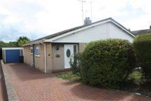 Semi-Detached Bungalow to rent in Llandudno Junction