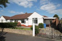 Semi-Detached Bungalow to rent in Tintern Avenue, Flixton...