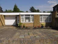 Detached Bungalow in The Avenue, Gravesend...