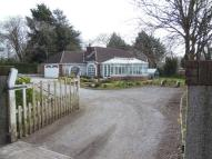Detached Bungalow for sale in Bere Alston