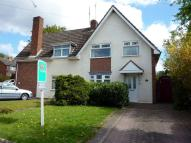 Ashenhurst Road semi detached house to rent