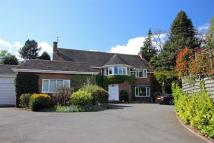 property to rent in Quarry Park Road, Pedmore