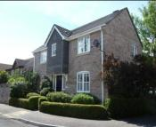 3 bed Detached house to rent in Warren Street...