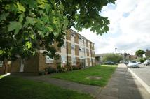 Ivy Road Apartment to rent