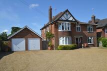 5 bedroom Detached property in Bucklesham Road, Ipswich