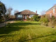 Bungalow to rent in Arundel Road, West Sussex