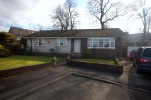 4 bed Bungalow for sale in Davidson Gardens...