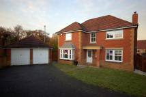 Detached home in Dornoch Drive, Blantyre...
