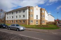 Ground Flat for sale in Trinity Drive...