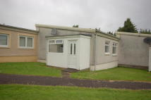 Terraced Bungalow to rent in Fallside Road, Bothwell...