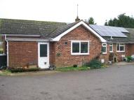4 bed Detached Bungalow in Hampshire, Bishops Sutton