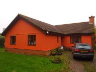 Detached Bungalow for sale in Suffolk, Wickham Skeith