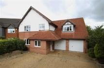 4 bedroom Detached house in The Limes, Thrapston...
