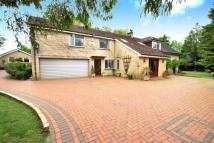 Redlynch Lane Detached property for sale