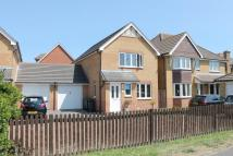 3 bedroom Link Detached House to rent in Usborne Close...