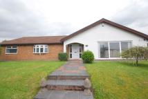 Detached Bungalow for sale in The BramblesRear Of...