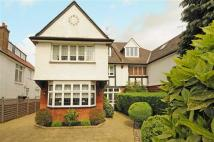 7 bed semi detached property in Teignmouth Road...