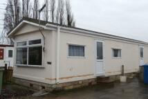 Bungalow to rent in Riverdale Park Bent Lane...