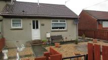 1 bed Semi-Detached Bungalow in Lovedale Crescent...