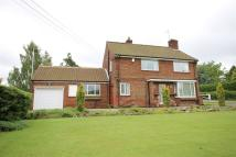 4 bed Detached property for sale in Great Gutter Lane (west)...