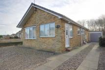 2 bedroom Detached Bungalow for sale in Maplewood Avenue, Hull...