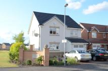 Detached house to rent in Lochnagar Road...