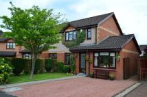4 bedroom semi detached home in Gilfillan Place...