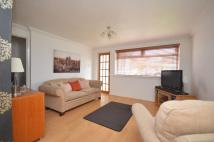 Cottage to rent in Barclay Road, Motherwell...