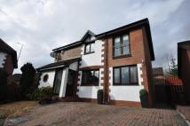 3 bed Detached house in Lime Grove , Motherwell ...