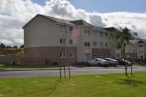 2 bed Apartment in Goldcrest Crescent ...