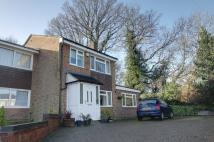 4 bedroom End of Terrace house in CUPID GREEN...