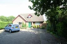 Detached Bungalow in Kingsclere