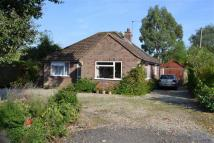 Detached Bungalow for sale in Hampstead Norreys Road...