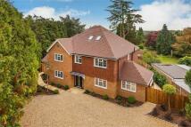 5 bedroom new property for sale in FARNHAM, Surrey
