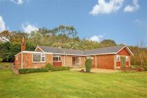 4 bedroom Detached Bungalow to rent in Headley, Near Farnham...