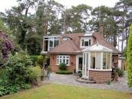 4 bedroom Detached house to rent in Farnham Road, Churt...