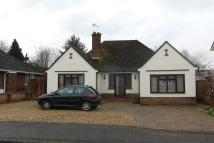 Hill Close Detached Bungalow for sale