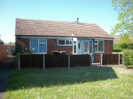 Detached Bungalow to rent in Aureole Walk, Newmarket