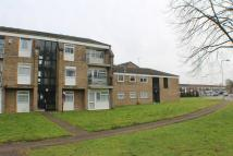 Flat to rent in Newmarket *FIRST MONTHS...