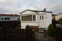 Detached Bungalow for sale in Sandy Leas Lane, Elton...