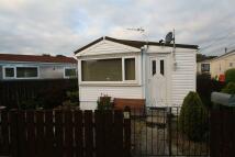 Detached Bungalow for sale in Sandy Leas Lane, Elton...