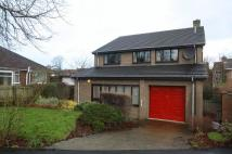 Detached property for sale in Greens Grove, Hartburn...