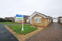 2 bed Detached Bungalow in Woodborough Lane...